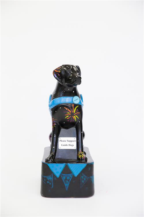 Guide Dogs NSW/ACT Charity Art Auction - in association with