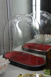 Sale 8256 - Lot 81 - Glass Dome on Stand