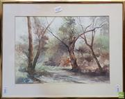 Sale 8609 - Lot 2039 - Phyllis Bray (1911 - 1991) (English) - Bushscape watercolour, 25 x 35cm, signed lower right