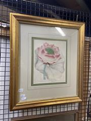 Sale 8924 - Lot 2032 - Hand-Coloured Engraving Nymphaea Nelumbo (Indian Lotus) 51 x 45cm (frame)