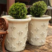 Sale 8871H - Lot 32 - A pair of tall French style cream glazed ceramic planters planted with buxus, height 65, diameter 58cm (height does not include plant)