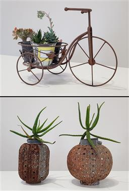 Sale 9188 - Lot 1704 - Tricycle metal plant stand with succulents Together with two others (Tricycle - h:30 w:45 d:25cm - Others h:58cm)