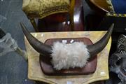 Sale 8031 - Lot 1031 - Pair of Mounted Bull Horns