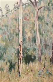 Sale 8597 - Lot 529 - Richard Musgrave Evans (1968 - ) - Untitled (Bush Landscape) 90 x 60cm