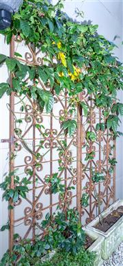 Sale 8568A - Lot 186 - A pair of wrought iron gates, H 220 x total W 180cm