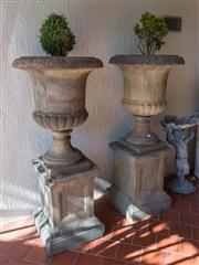 Sale 7984 - Lot 2 - A pair of composition stone garden urns on stands with buxus trees