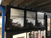 Sale 8753 - Lot 2092 - Artist Unknown - Crashing Waves, photographs (triptych), frame size: 58 x 148cm