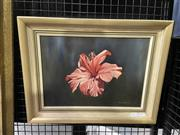 Sale 9016 - Lot 2032 - Donald Selway Hibiscus oil on canvas, 34 x 44cm (frame) signed