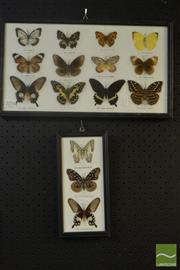 Sale 8522 - Lot 2076 - 2 Sets of Framed Butterflies