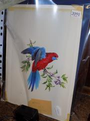 Sale 8422T - Lot 2091 - Deidre Hunt (3 works), Bird Watercolours, each signed