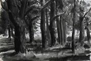Sale 8683A - Lot 5174 - Ian Chapman (1946 - ) - Pinegrove Crookwell, Bowral Forest 36.5 x 54.5cm
