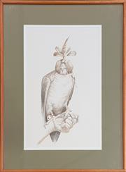 Sale 8973 - Lot 2025 - Artist Unknown Hawk pencil on paper, 83 x 62cm (frame)