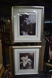Sale 8306A - Lot 97 - Mieke Cohen (1943 - ) (2 works) - Flowers with Thanks; Lily - One Week Later 49.5 x 39.5cm, each (frame size, 87 x 77cm)