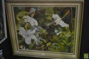 Sale 8530 - Lot 2025 - Mary Whitmore - White Hibiscus 44.5 x 55cm
