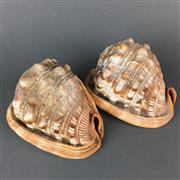 Sale 8638 - Lot 609 - Pair of Helmet Shells, Together with Cameo Shell Lamp