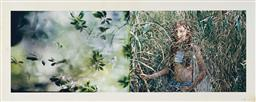 Sale 9147 - Lot 2085 - STEPHEN ROACH Hearth, 1999 type C photograph, ed. 2/10 (AF) 50 x 125 cm signed lower right, Savill Gallery label verso