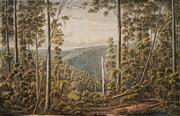 Sale 8583A - Lot 5029 - Eugene Von Geurard (1811 - 1901) (2 works) - Crater of Mount Eccles, Victoria; Forrest Cape, Otway Ranges 38 x 52.5cm; 43 x 60cm (sh...