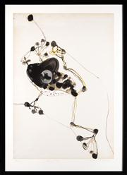 Sale 8665A - Lot 5083 - John Olsen (1928 - ) - Frog and fly 74 x 51cm (framed size 89 x 64cm)