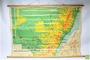 Sale 8644 - Lot 77 - Chas H Scully Vintage School Map of NSW