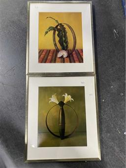 Sale 9159 - Lot 2063 - A Pair of decorative still life prints with orchid and shell composition in gilt frames.