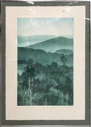Sale 8958 - Lot 2014 - Peter Hickey, Blue On Green, 1996, colour etching, ed.15/30, signed lower right