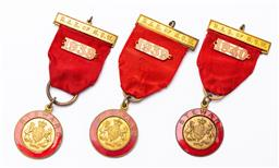 Sale 9168 - Lot 493 - Group of three RAS of NSW stewards medallions for 1938,39,40, all mark J.M. Dempster to back, total length 9.5cm