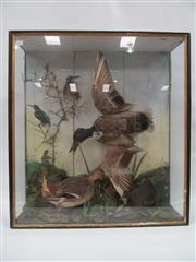 Sale 8431A - Lot 665 - Antique English Taxidermy Bird Diorama