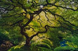 Sale 9189A - Lot 5054 - PETER LIK (1959 - ) 'Inner Peace' C Type photograph, ed. 337/950 63.5 x 97.5 cm (frame: 109 x 143 x 5 cm) signed lower right