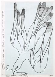 Sale 8575 - Lot 598 - Charles Blackman (1928 - ) - Study for Bird Falling with Snake, 1980 29 x 21cm