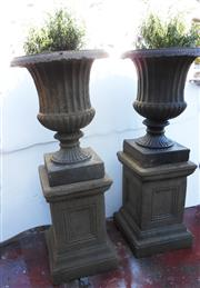 Sale 8256A - Lot 65 - A pair of cast stone urns on stands and planted with lavender bush. Some edge chips / losses. Overall Ht: 97 cm. Urns: 50 x 37 cm