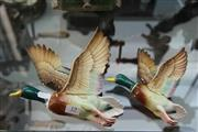 Sale 8261 - Lot 19 - Graduated Wall Mallard Figures