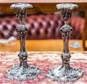 Sale 8287A - Lot 58 - A pair of nickel rococo candle sticks. Highly detailed, 29cm high x 17cm base width
