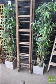 Sale 8532 - Lot 1236 - Pair of Faux Bamboo Shoots in Planters
