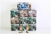 Sale 8849P - Lot 697 - King And Country Hand Painted Figurines (10 Boxes)