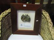 Sale 7974A - Lot 1032 - 2 Framed African Fossils