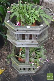 Sale 8338 - Lot 1402 - Pair of Zygocactus in Terracotta Planters on a Tiered Plant Stand