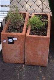 Sale 8550 - Lot 1325 - Pair of Matching Terracotta Herb Troughs