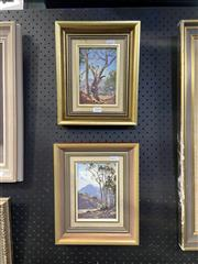 Sale 8978 - Lot 2004 - Michael McCarthy (2 works) Sunlight Gum & The Heyson Tree oil on board, framevsize; 28 x 24  each, signed lower left, titled verso