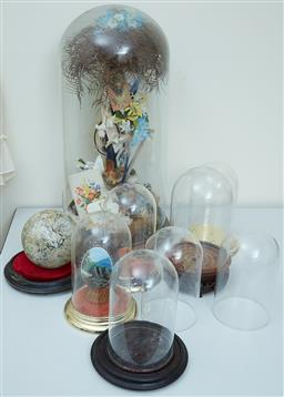 Sale 9103M - Lot 566 - A quantity of glass domes, some with contents and stands, largest Height 57cm, cracked