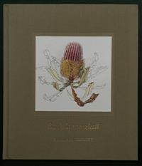 Sale 8176A - Lot 27 - Banksia Menziesii  by Philippa Nikulinsky. Fremantle Arts Centre Press 1992. Hardback, no dustjacket, colour plates.