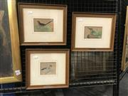 Sale 9072 - Lot 2006 - Artist Unknown (C19th) Birds watercolour and gouache, 25 x 29cm (frame), unsigned