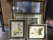 Sale 8794 - Lot 2069 - Assortment of Decorative Prints including Lloyd Rees, botanical prints, framed and various sizes