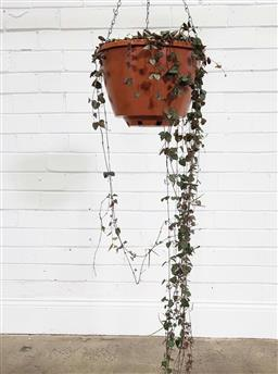Sale 9188 - Lot 1255A - Chain of hearts in hanging basket (h:142cm)