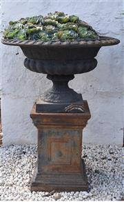 Sale 8972H - Lot 72 - Cast iron urn on plinth with extensive succulent planting, Height 1.1m x Diameter 85cm