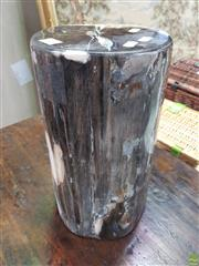 Sale 8637 - Lot 1067 - Petrified Wood Cylinder Block