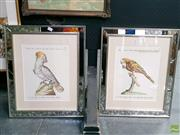 Sale 8582 - Lot 2046 - Pair of Framed Bird Prints