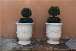 Sale 9135H - Lot 181 - A pair of glazed French Anduze style urns planted with double sphere Buxus 65cm height 55cm diameter
