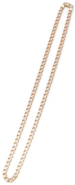 Sale 9164J - Lot 374 - A 9CT GOLD NECK CHAIN; 4.6mm wide filed curb link to parrot clasp, length 54cm, wt. 20.42g.