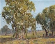 Sale 9047 - Lot 595 - Kasey Sealey (1961 - ) - Cattle Under the Trees near Parks 37.5 x 47.5 cm (frame: 58 x 68 x 4 cm)