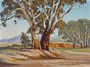 Sale 8992 - Lot 509 - Robyn Collier (1949 - ) - Wilpena Gums, Flinders Ranges 43.5 x 59.5 cm (frame: 65 x 80 x 5 cm)